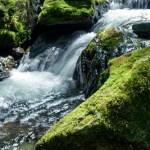水難事故にご注意!(その2)-海より川のほうが危険?! 川が危ない原因とは-