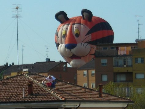 balloons-festival-mongolfiere-dovunque