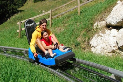 val-di-fiemme-alpine-coaster-estate