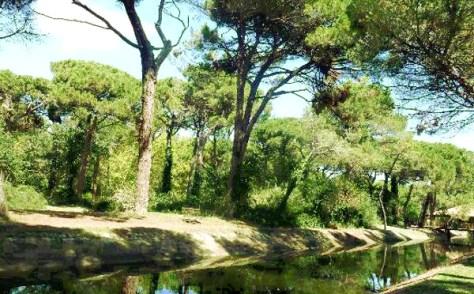 Idee weekend con i bambini in italia emilia romagna parco cervia milano marittima