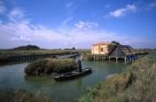 40 idee per un weekend con i bambini in Italia parco delta del po emilia romagna valli-comacchio-2-600x393