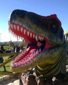 Parco dei dinosauri-Borgo Celano-mangiati dal T-Rex