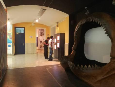 43 idee per un weekend con i bambini palermo museo geologia gemellaro