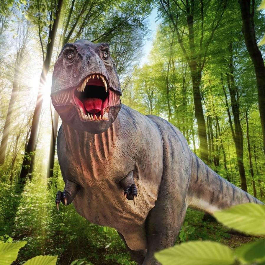 parchi dinosauri europa da visitare con i bambini Dinosaurier Museum gernania