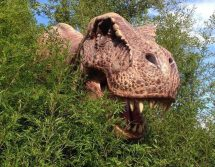 dinosauri_dinoland_mirabilandia3