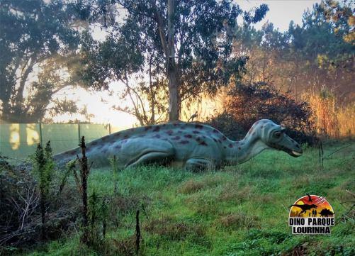 dinosauri_dinoparque_portogallo