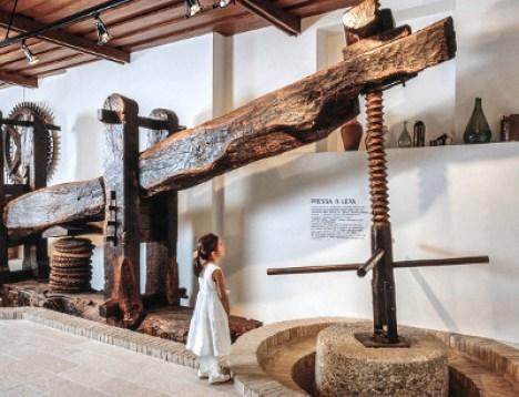 oelmuseum_cisano_bardolino