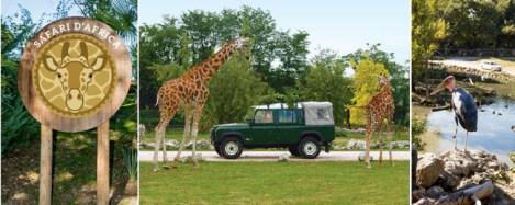 Parco natura Viva-Africa