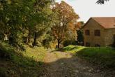 vecchie_fattorie_liguria_giandriale_sentiero