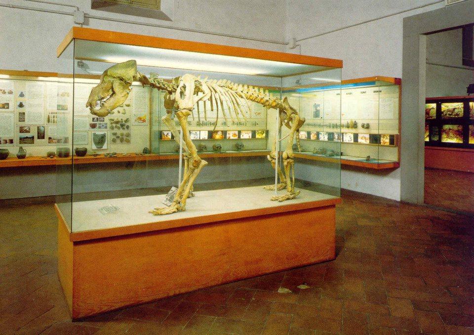 visitare Firenze con i bambini Museo della preistoria