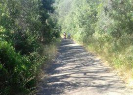 Toscana per bambini Parco della Maremma Ciclabile per Campolungo
