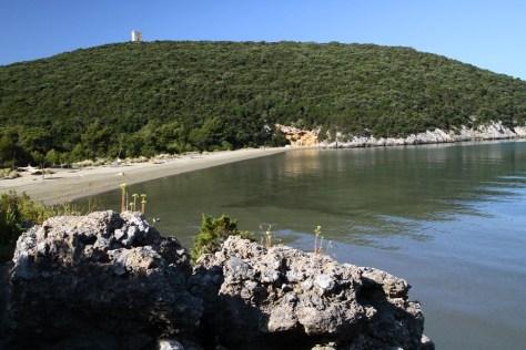 parco della maremma - spiaggia protetta