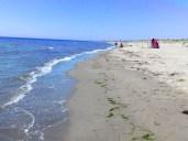 parco-maremma-spiaggia-campolungo-nord