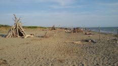 principina spiaggia libera