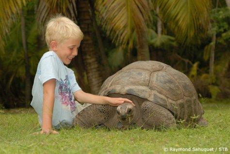 Seychelles con i bambini giochiamo con le tartarughe giganti