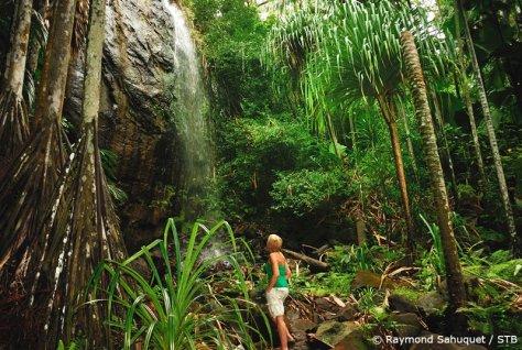vacanze bambini famiglie seychelles_cascate-Valle-De-Mai
