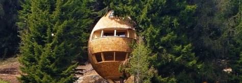 casa sull'albero-malga_priu_pigna_friuli-boschi