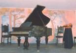 museo_degli_strumenti_musicali_strumenti_rari