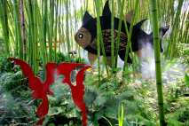 weekend bambini lombardia giardino heller