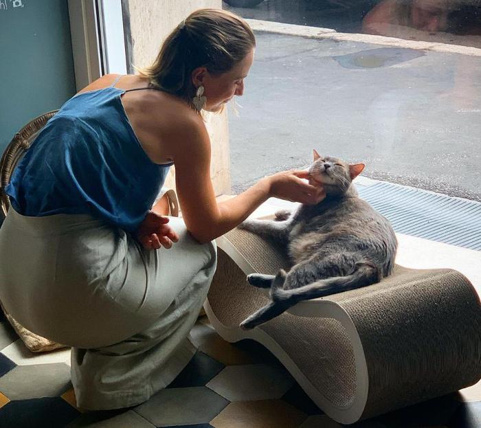 neko cafè-Romeow-cat-bistrot-Roma-3