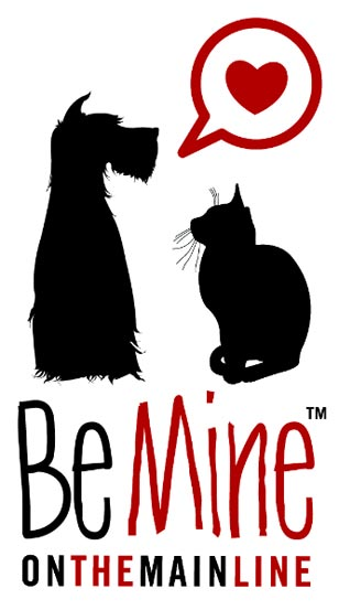 Be Mine on the Main Line is Thursday, Feb 4th at Spamps Restaurant in Conshohocken. RSVP is highly recommended so we can plan accordingly.
