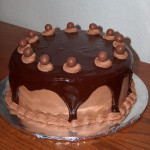 Chocolate Malt Cake with Ganache