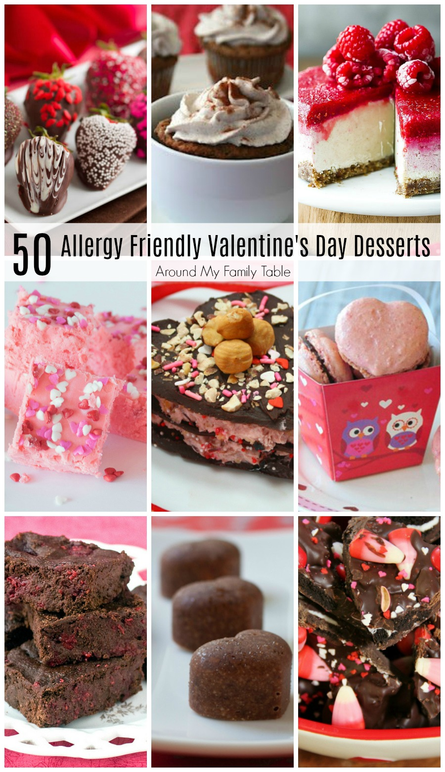 Valentine's Day is quickly coming up!  These decadent Allergy Friendly Valentine's Desserts are sure to satisfy your sweet tooth.