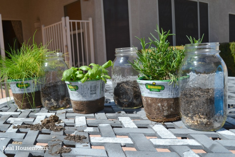 Herbs and jars_not planted
