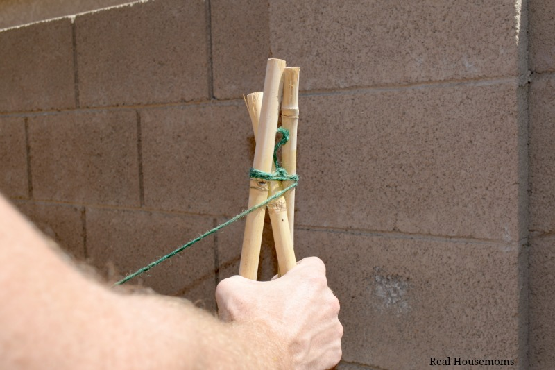 DIY Natural Bamboo Tomato Cage: Tie Knot and Wrap