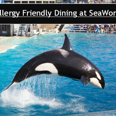 Allergy Friendly Dining at SeaWorld
