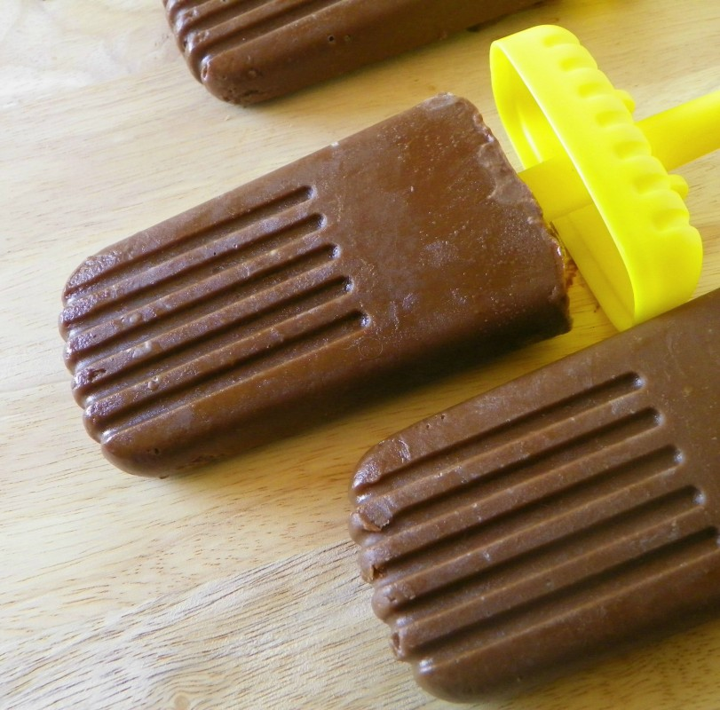 Vegan Chocolate Pudding Pops