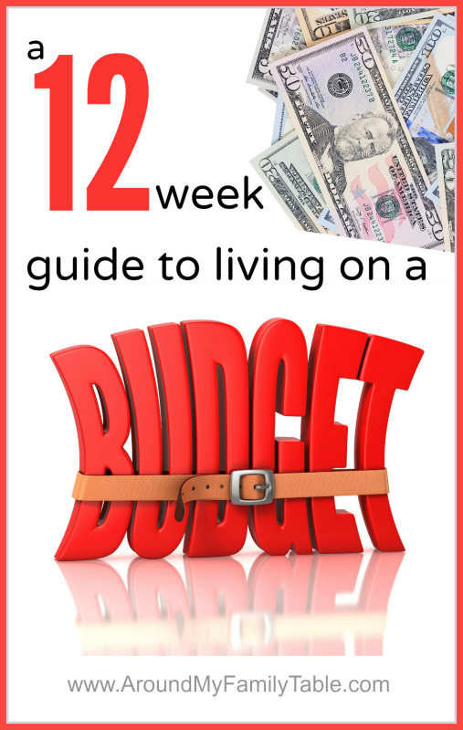 Living on a Budget: A 12 week series to keep you living within your means and on a budget!