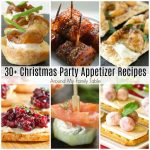Christmas Party Appetizer Recipes