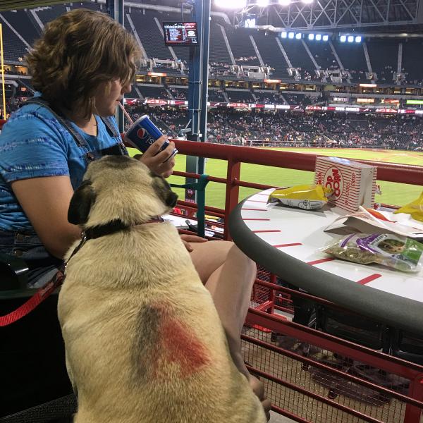 Take your dog to the Ballpark with PetSmart and the AZ Diamondbacks!