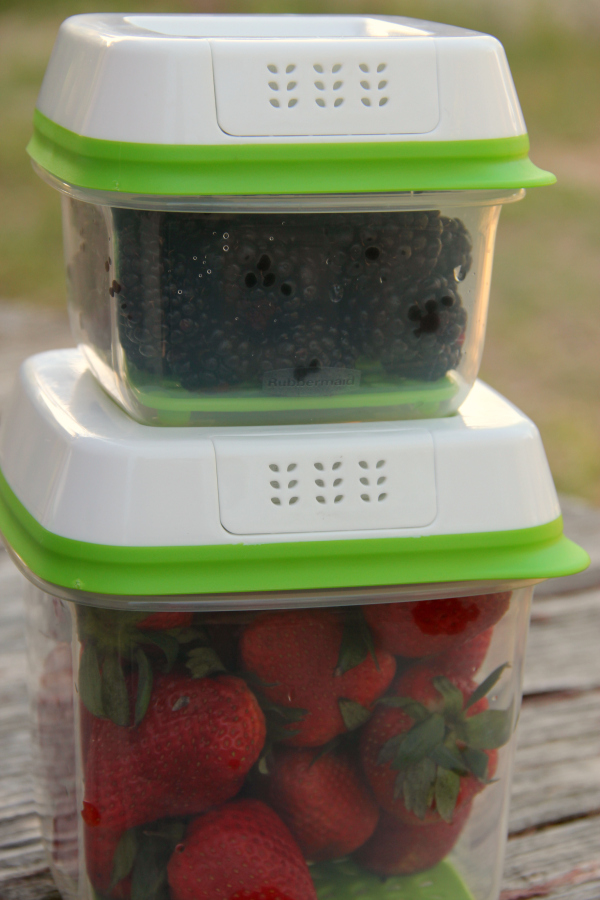 rubbermaid with fruit