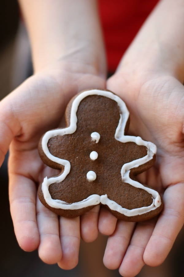These Holiday Ginger Cookies are perfect for any holiday party or cookie exchange and are super easy to make too.