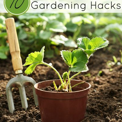 10 Must-Try Gardening Hacks