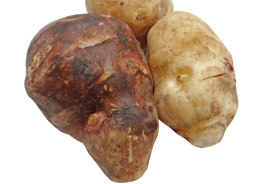 What's in Season Guide: Sunchokes