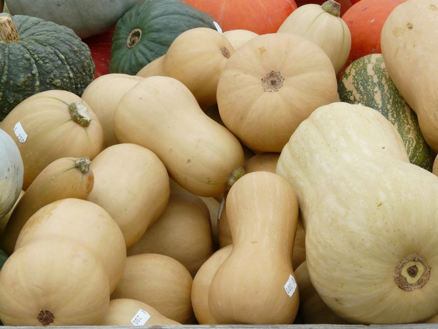 What's in Season Guide: Winter Squash