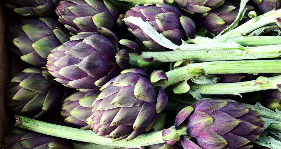 What's in Season Guide: artichokes