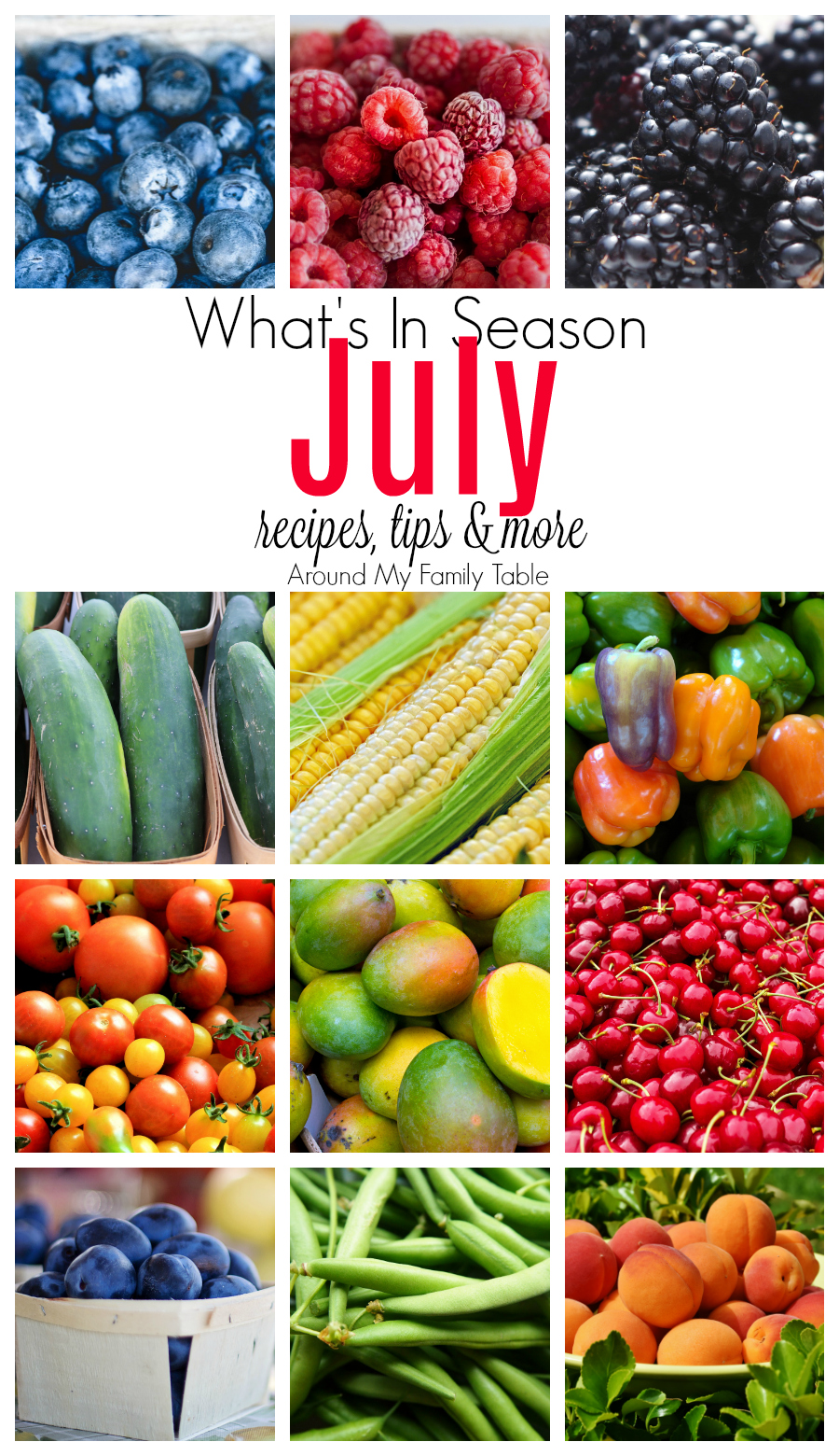 There is so much delicious produce in July and if you are like me, I try to save money at the store by buying produce that's in season. It's cheaper, it's fresher, and it didn't travel very far to get to your table. MyJuly — What's in Season Guideis your guide to July Seasonal Produce along with recipes, tips, and more! #seasonal #eatseasonally #whatsinseason #seasonalrecipes via @slingmama
