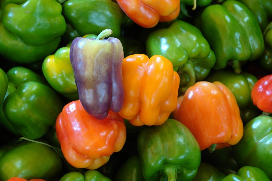 What's In Season--Bell Peppers