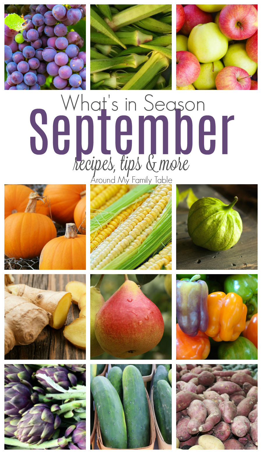 September Seasonal Produce