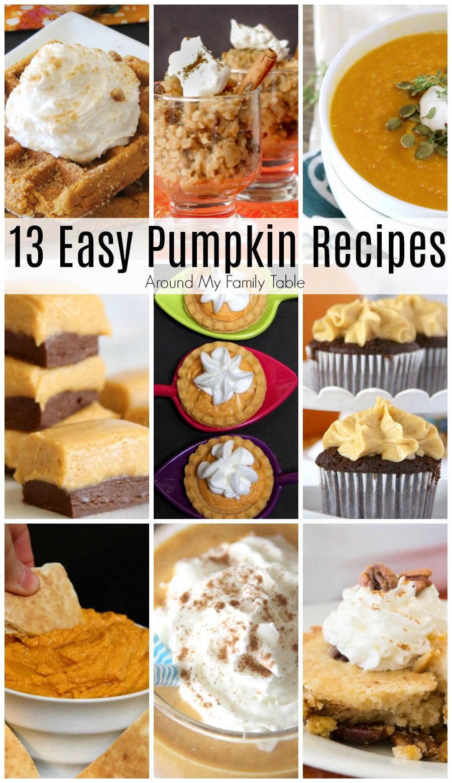 Fall is pumpkin season!! Looking for a way to use more pumpkin this autumn? Check out these easy pumpkin recipes that will blow your mind.