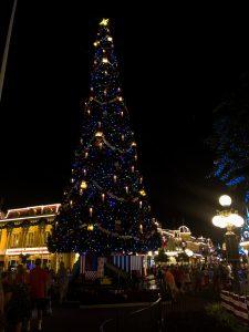 Christmas Tree at Magic Kingdom