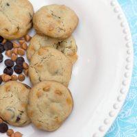 Dark Chocolate Chip Butterscotch Cookies