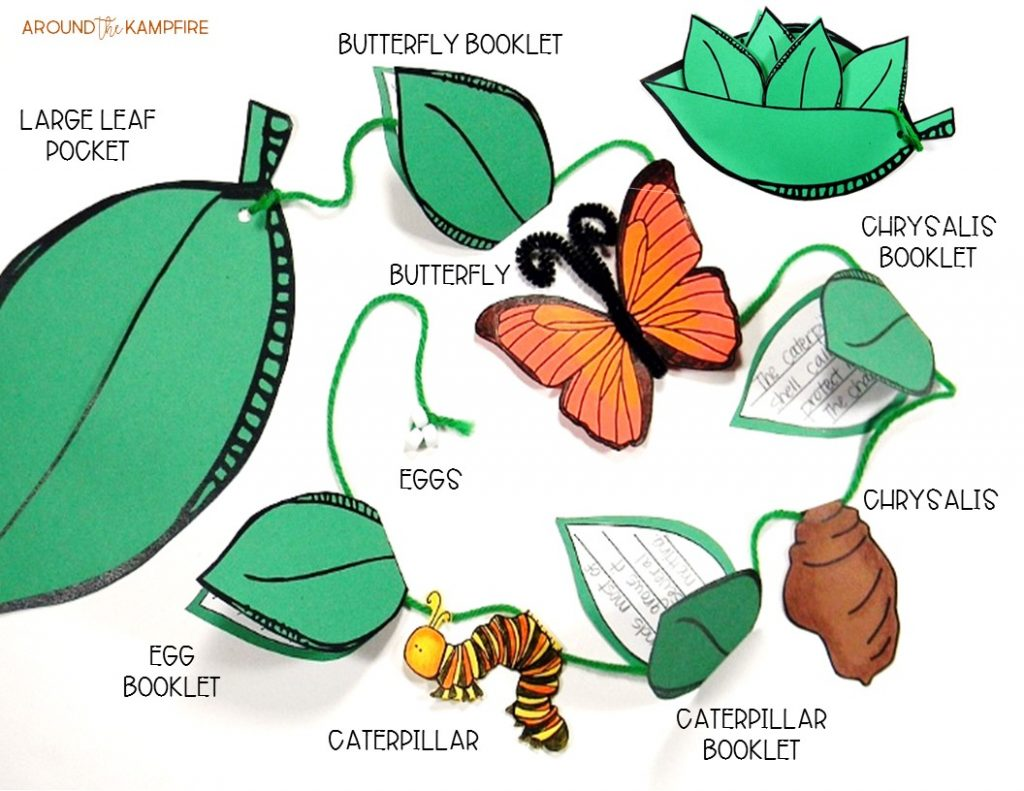 Get Butterfly Life Cycle Activities Amp Free Printables For