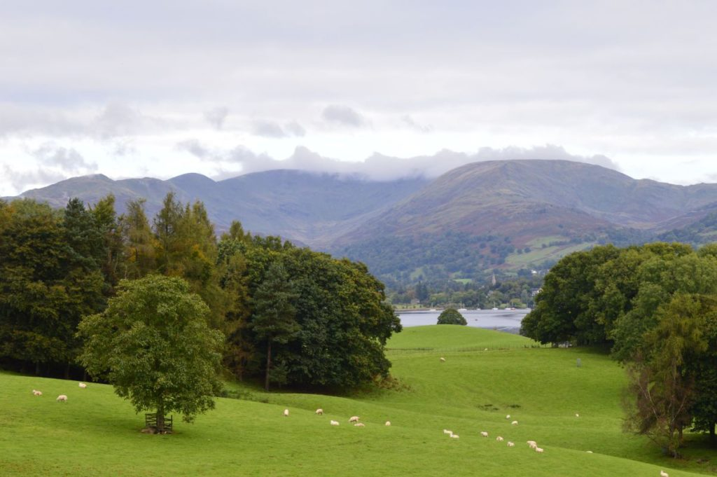 A walk along Windermere towards Wray Castle, near to the campsite.