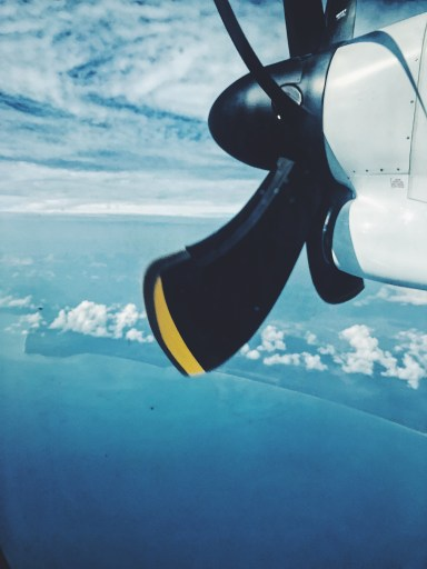 Image depicts the view from the Propeller plane between Cairns and Hamilton Airport.
