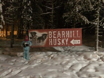 Bearhill Husky at Santa Claus Village in Rovaniemi, Finland